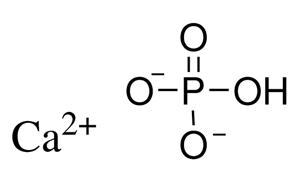 Inorganic Phosphate 7757-93-9 CAS |...